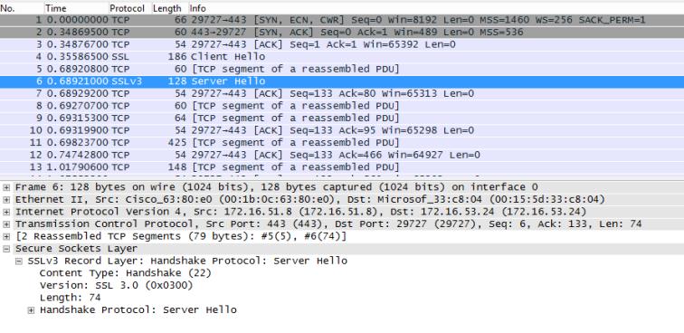 .NET 4.5 Server Hello